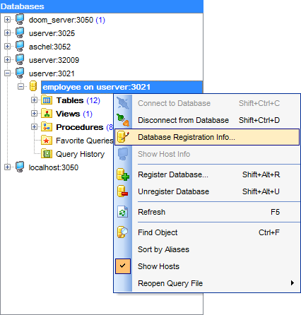 hs2420 - DB Explorer - Database context menu