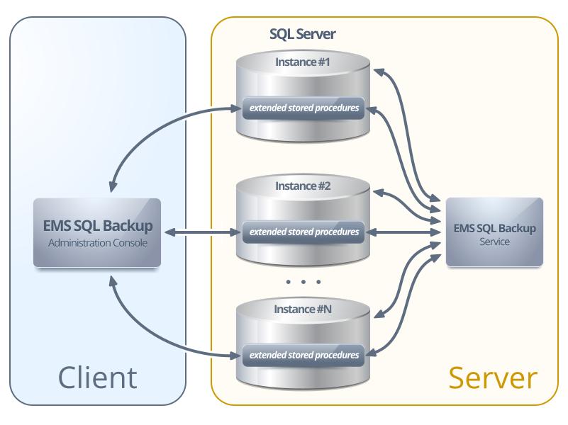 EMS Data Export For SQL Server