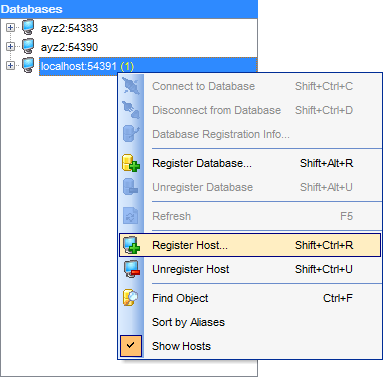 hs2410 - DB Explorer - Host context menu